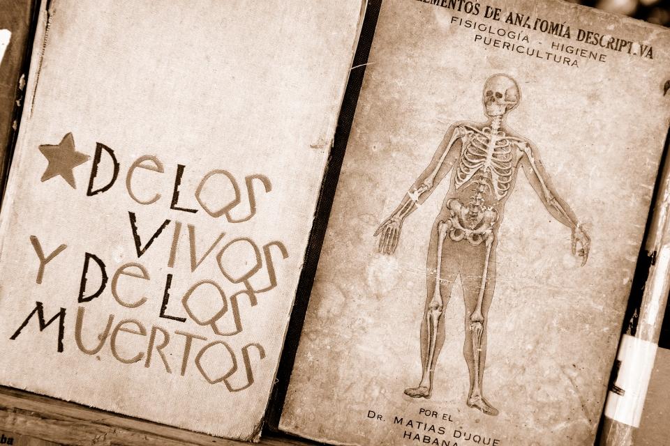 Yann-Deshoulieres-Cuba-La-Havane-Skeleton-Anatomie