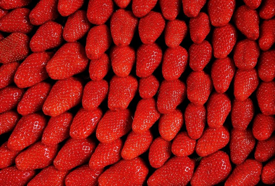 yann deshoulieres-fraises-strawberries